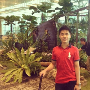 In the Changi Singapore Airport